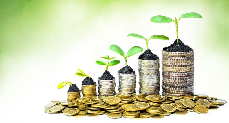 مساهمة المراجعية التحليلية في اتخاذ القرارات الاستثمارية للمؤسسة الاقتصادية