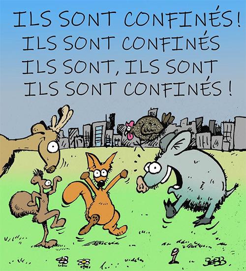 Humour du Jour..toujours :) - Page 7 0v54q