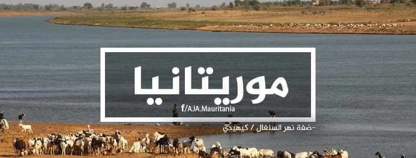 مجموعة كتب حول تاريخ موريتانيا