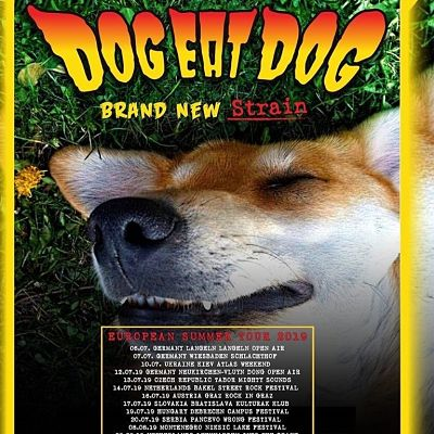 DOG EAT DOG [Décines - 69] > 26-09-2019