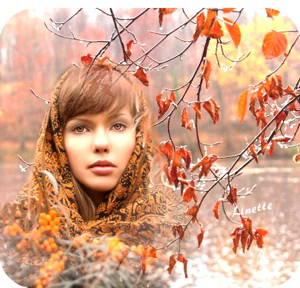 58 automne