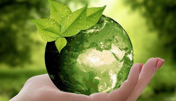 اقتصاد البيئة