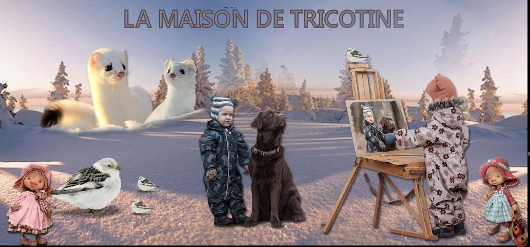 LE PETIT MONDE DE  TRICOTINE