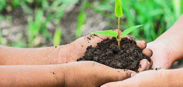 الجماعات المحلية و استراتيجية حماية البيئة