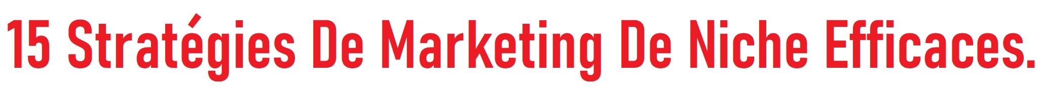 15 Stratégies De Marketing De Niche Efficaces.