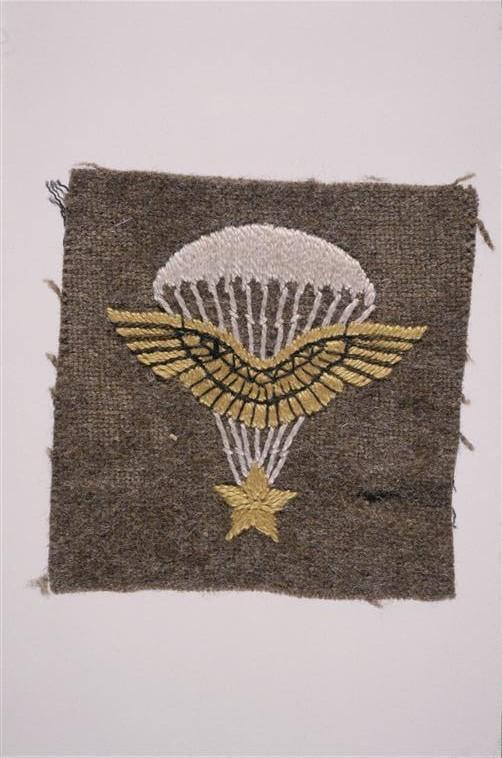 Parachutistes / commando / Jedburghs / BCRA / S.O.E. / O.S.S. / S.A.S 0WqO1