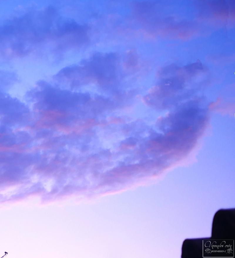 Un petit Ourson dans les nuages ce matin ? .... 5dr3v