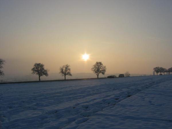 Austerlitz : 2 décembre 1805 9ryoq