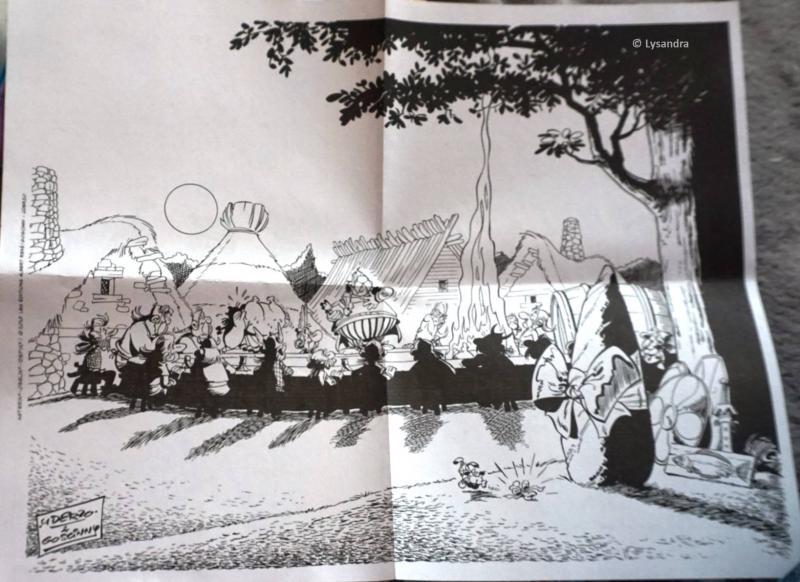 Mes dernières acquisitions Astérix - Page 42 GYqpv