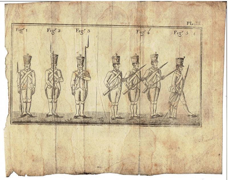 Planches infanterie de ligne 1805 GbPr3