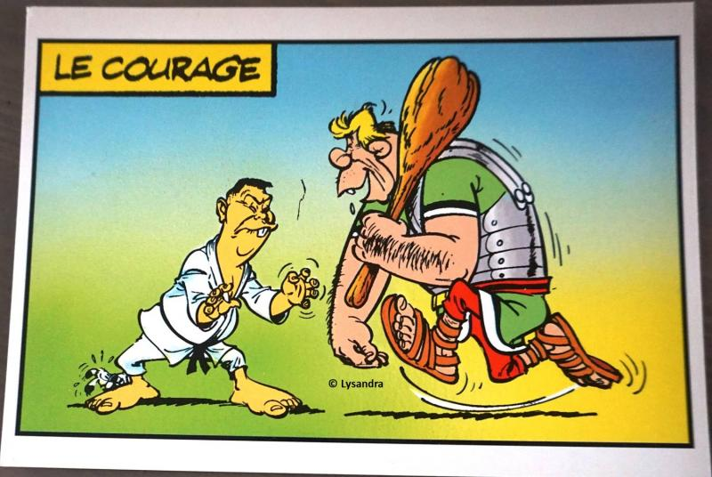 Astérix : ma collection, ma passion - Page 17 N8W0P