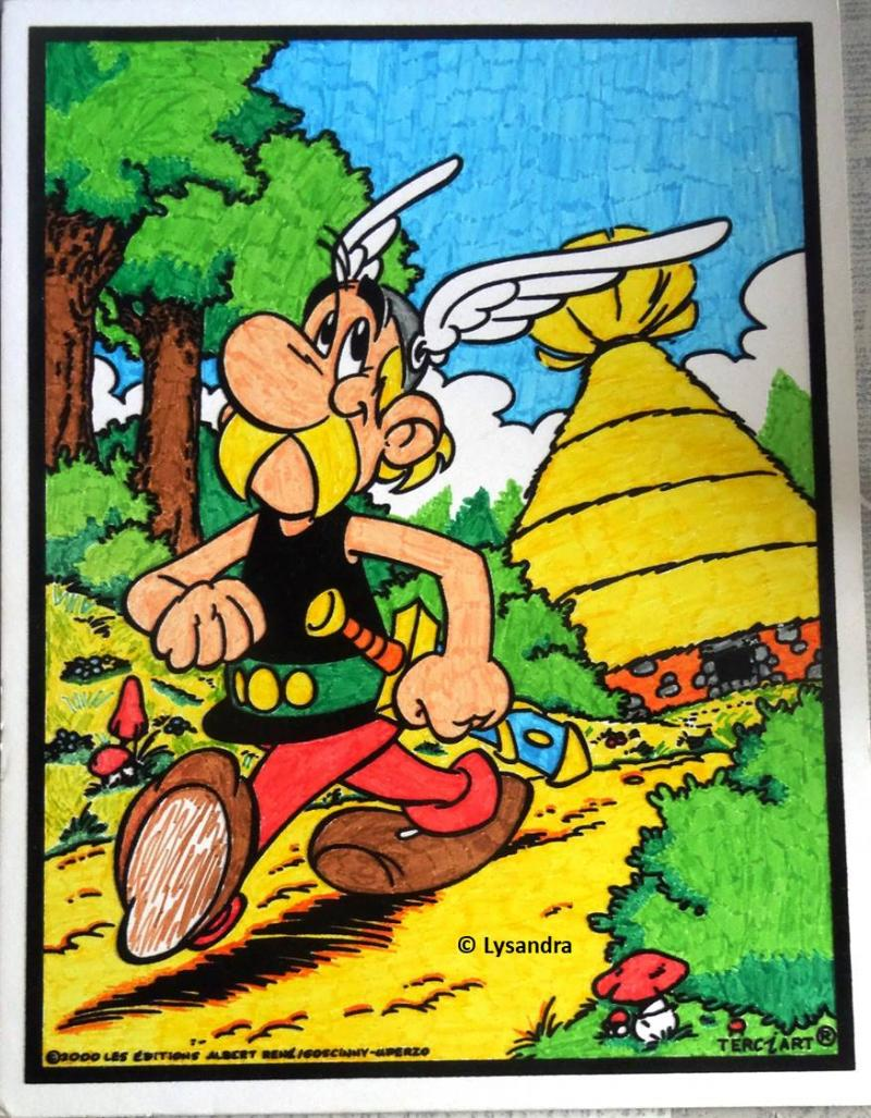 Astérix : ma collection, ma passion - Page 11 NL1ZY