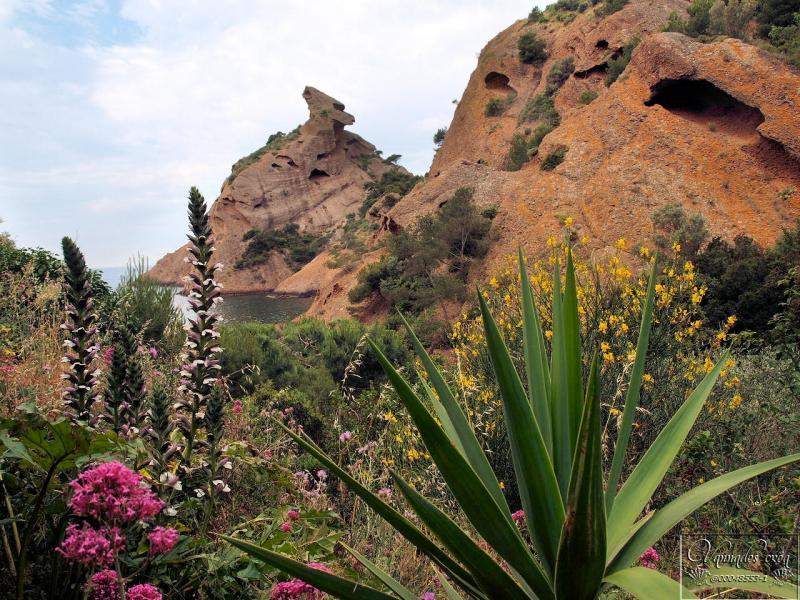 Calanque de Figuerolles (Un petit coin de Paradis)  PwlN4