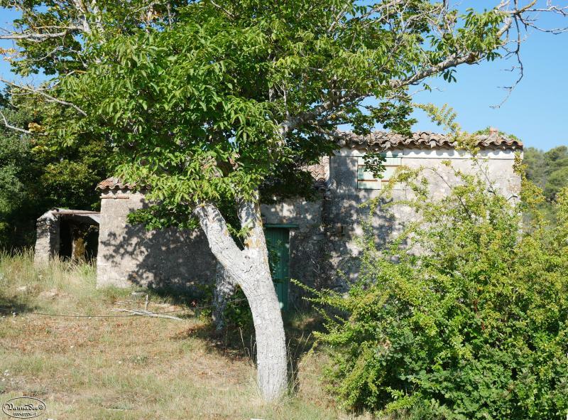 Petits cabanons en Provence XROWa