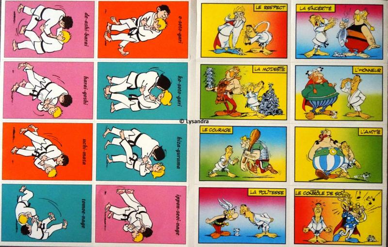 Astérix : ma collection, ma passion - Page 17 ArWqA