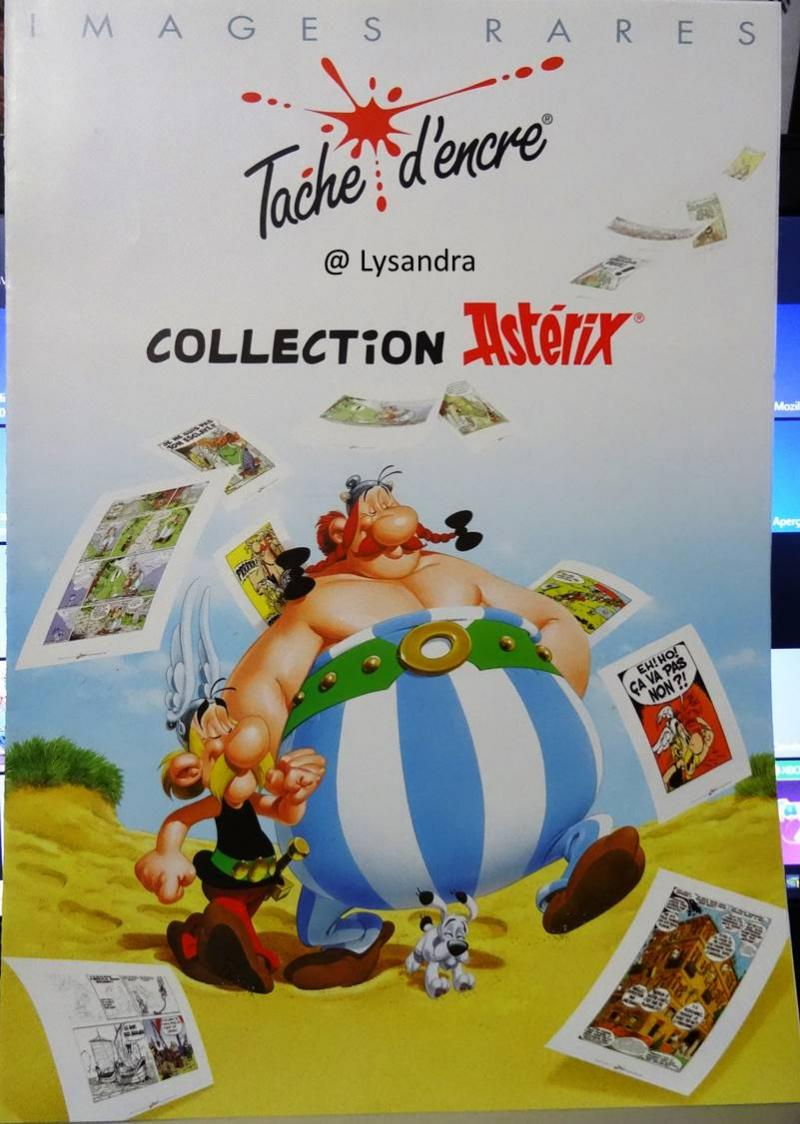 Astérix : ma collection, ma passion - Page 12 AvqXE