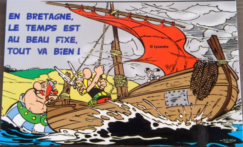Astérix : ma collection, ma passion - Page 20 BDWe0