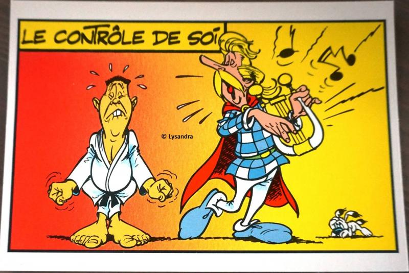 Astérix : ma collection, ma passion - Page 17 D1WgL
