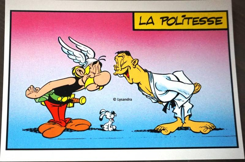 Astérix : ma collection, ma passion - Page 17 ErW25