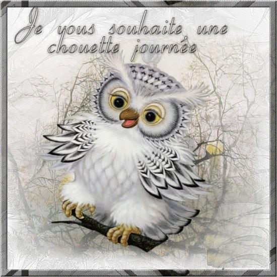 Bonjour, bonsoir..... - Page 19 K0wwZ