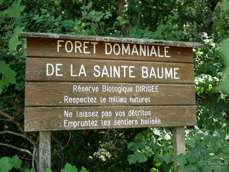 Massif de la Sainte Baume ce jour NO7Xd