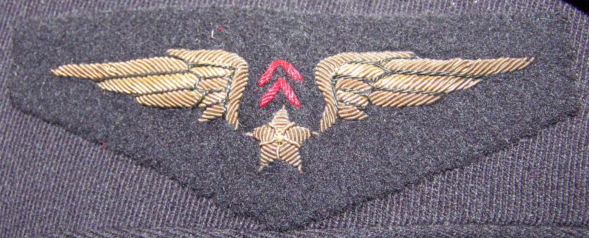 Armée de l'air « Sahara » Djw9A