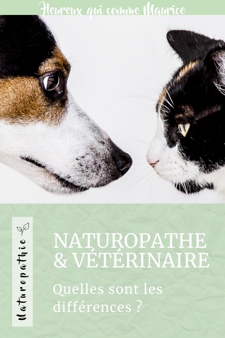 Naturopathe animalier et vétérinaire quelles différences