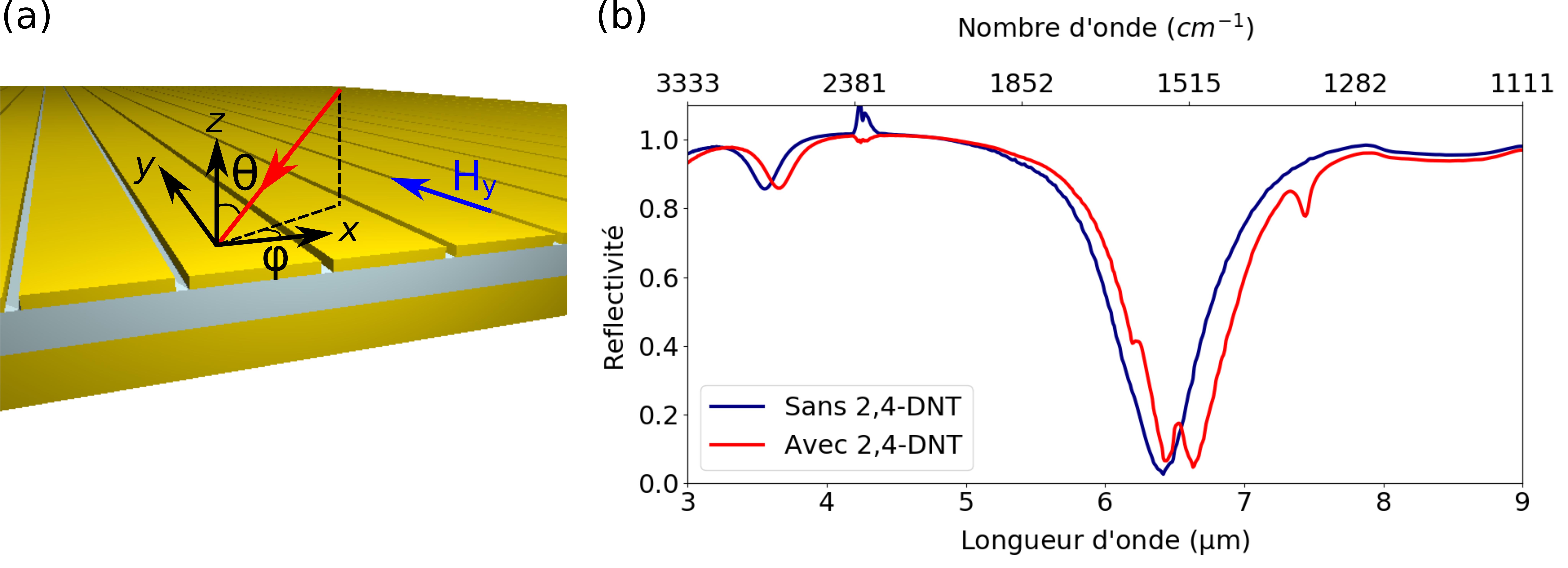 (a) Schéma 3D du résonateur simplifié. (b) Spectre infrarouge avec et sans DNT