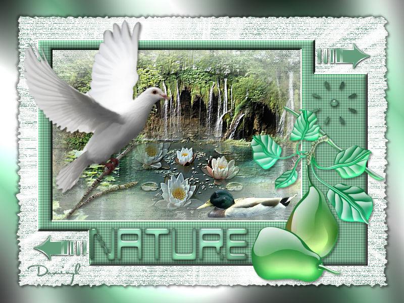 Nature (Psp) KaJXr