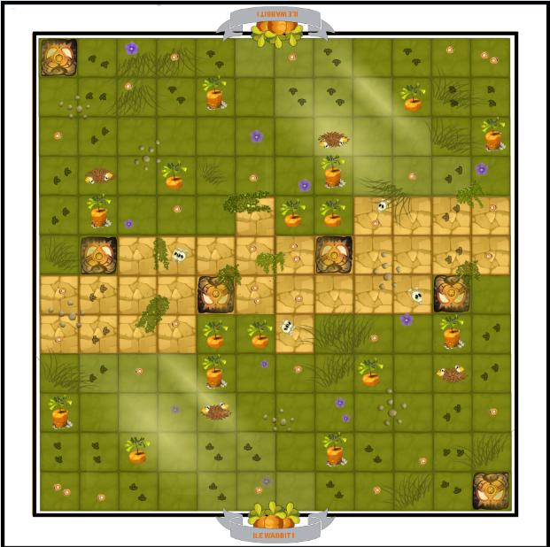 Map île Wabbit  LO2nY