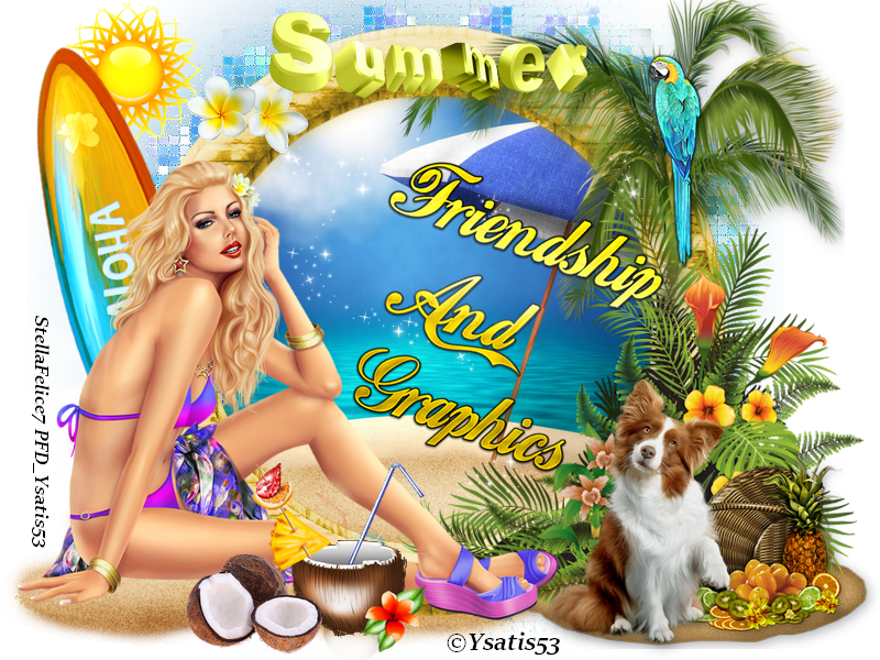 Forum Friendship and Graphics