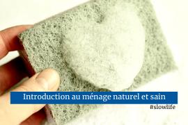 Introduction au ménage sain et naturel