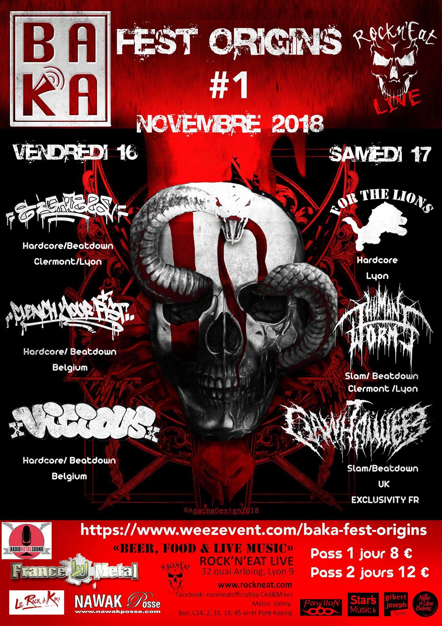 FEST ORIGINS 1 [Lyon - 69] > 16-11-2018