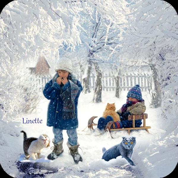 36 hiver