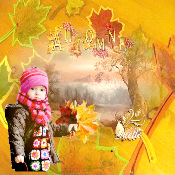 82 automne