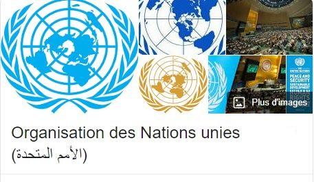 دراسات حول الأمم المتحدة
