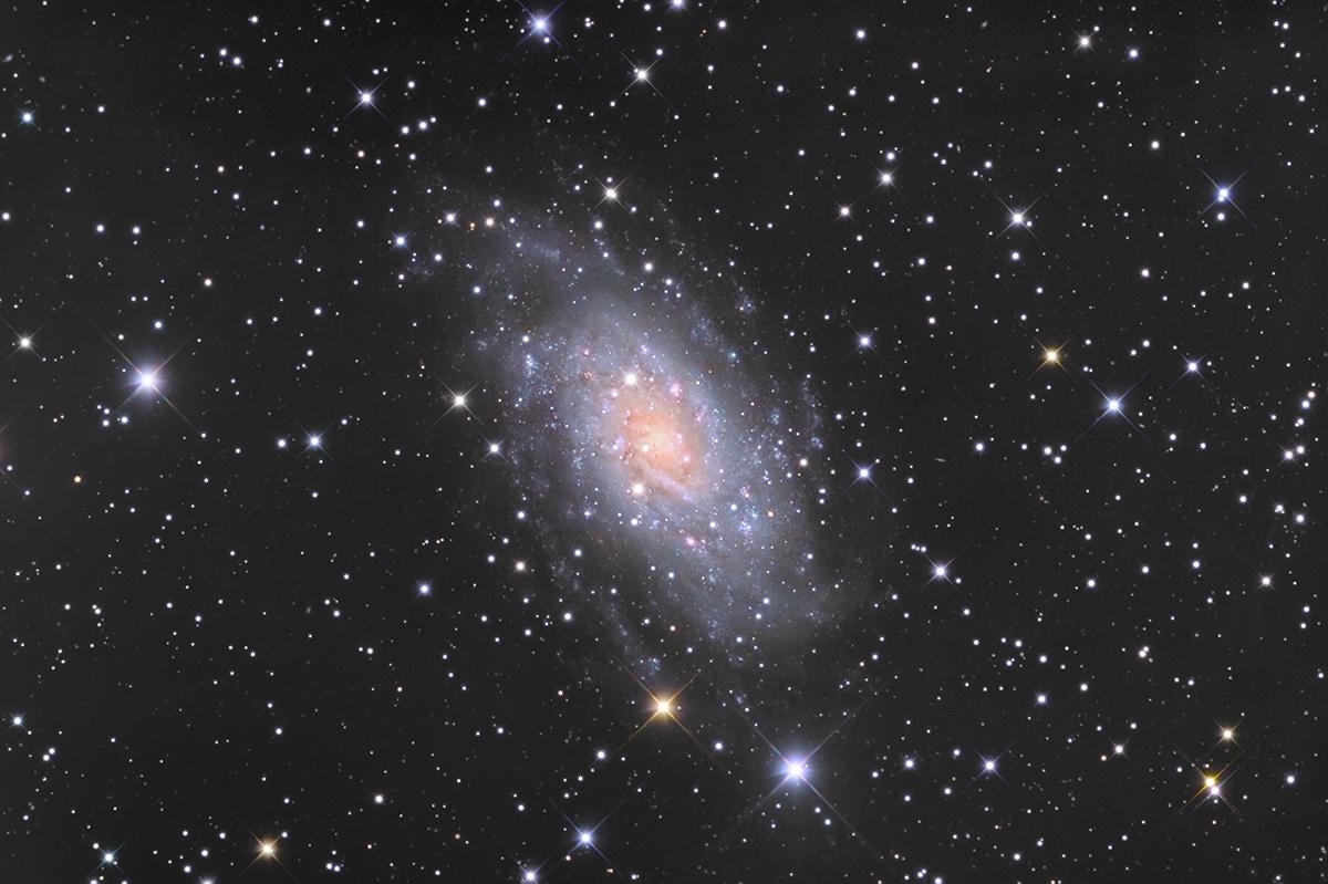 NGC2403 à l'ODK16 R22Ov