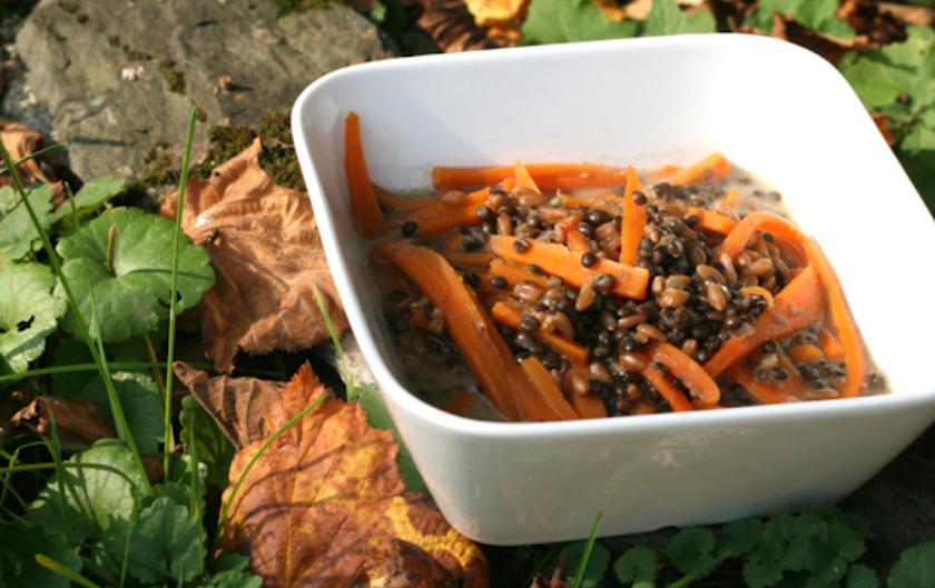 Recette vegan végétale et sans gluten lentilles beluga épautre carottes lait de coco