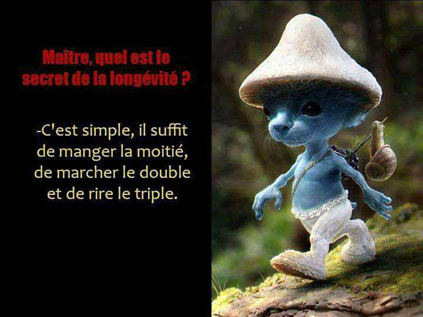 Humour du Jour..toujours :) - Page 2 RgoJm