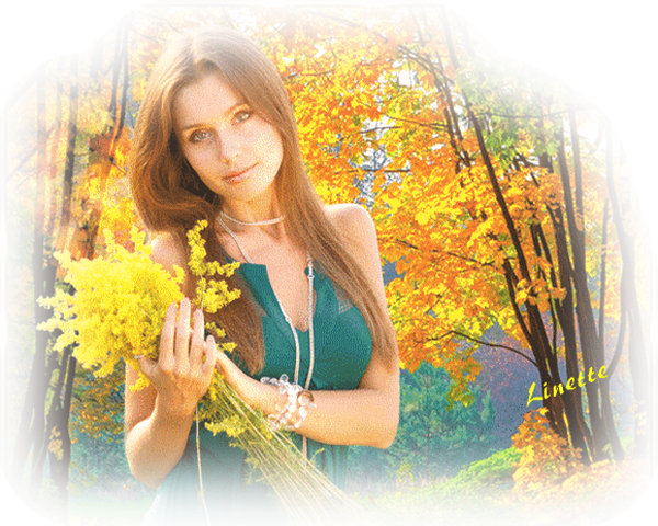 55 automne