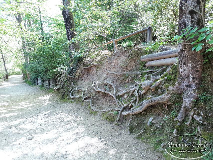 """La Vallée de St Pons """" La Vallée Rose """" à Gemenos Bouches du Rhône ♥♥♥ X9N7l"""