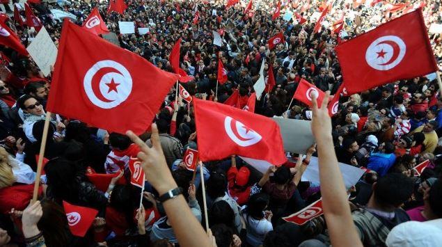 دور المنظمات الدولية غير الحكومية في دعم عملية التحول الديمقراطي في تونس 2011-2016