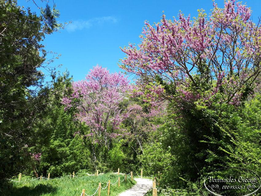 """La Vallée de St Pons """" La Vallée Rose """" à Gemenos Bouches du Rhône ♥♥♥ D5Jww"""