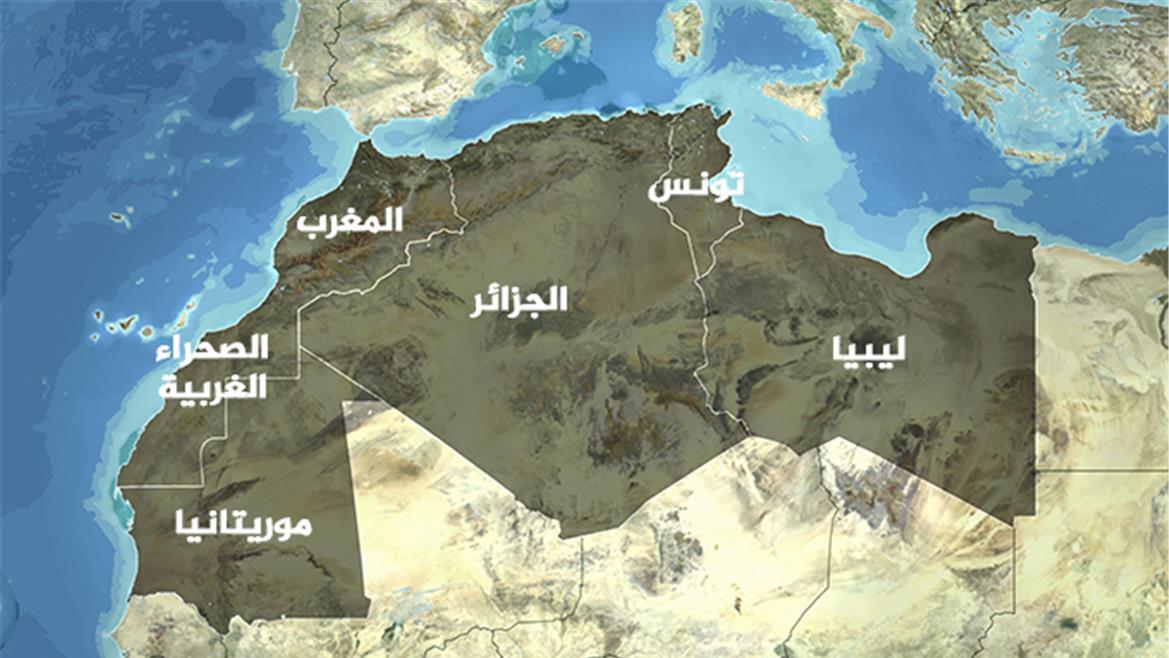العسكريون في موريتانيا والجزائر وتجربة التحول الديمقراطي