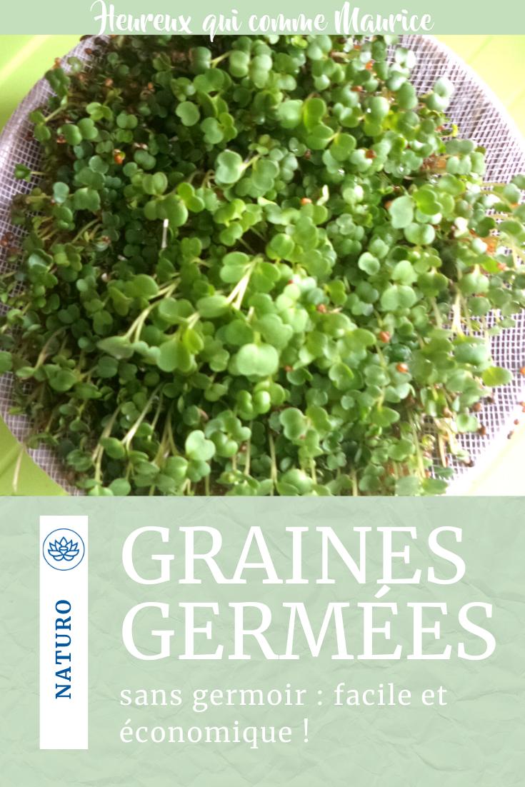 graines germées bienfaits et recette