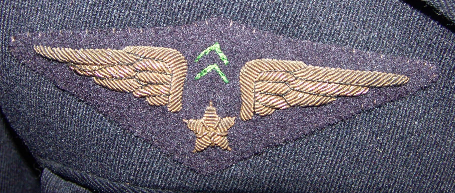 Armée de l'air « Sahara » GNj8D