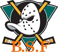 B.S.F