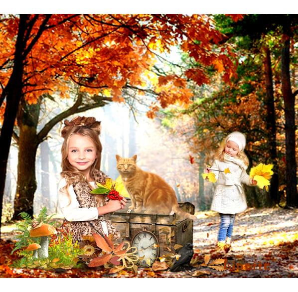 151 automne