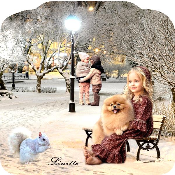 207 hiver