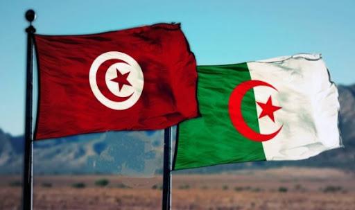 آليات الترشح في الانتخابات وأثرها على النظام السياسي في الجزائر وتونس